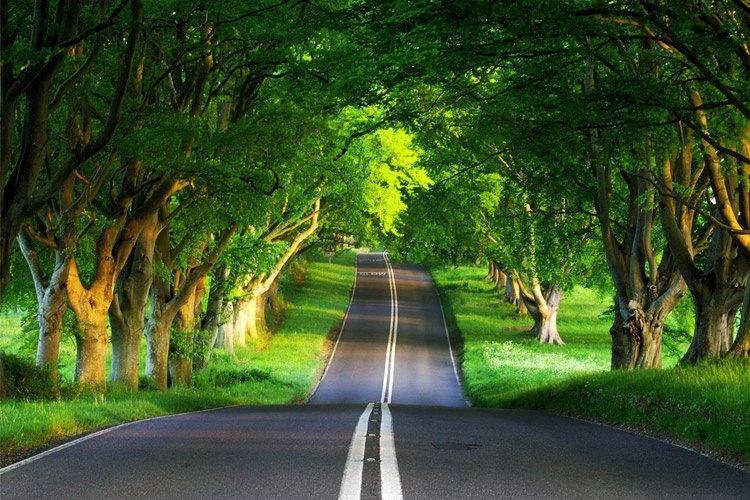 بهترین جاده های دنیا با چشم اندازهای بی نظیر