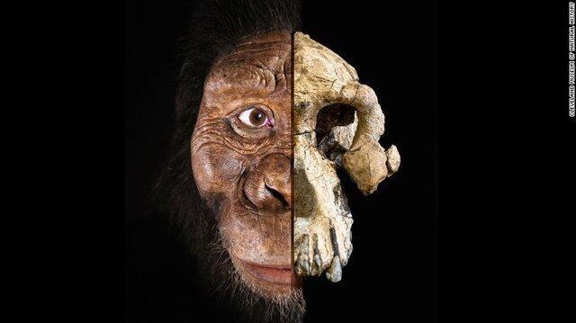چهره قدیمی ترین انسان های اولیه رونمایی شد
