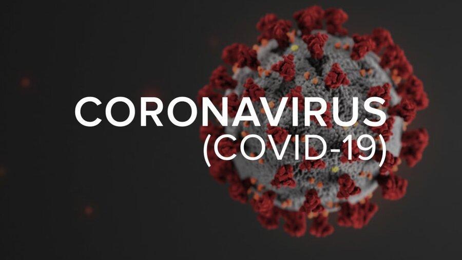 ثبت بیش از 4 هزار مدرک از آخرین یافته های علمی درباره کرونا در سامانه نماگر کووید 19