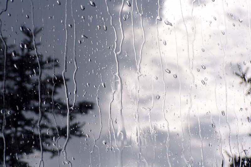 خبرنگاران میانگین بارش باران در کرمانشاه به 446 میلی متر رسید