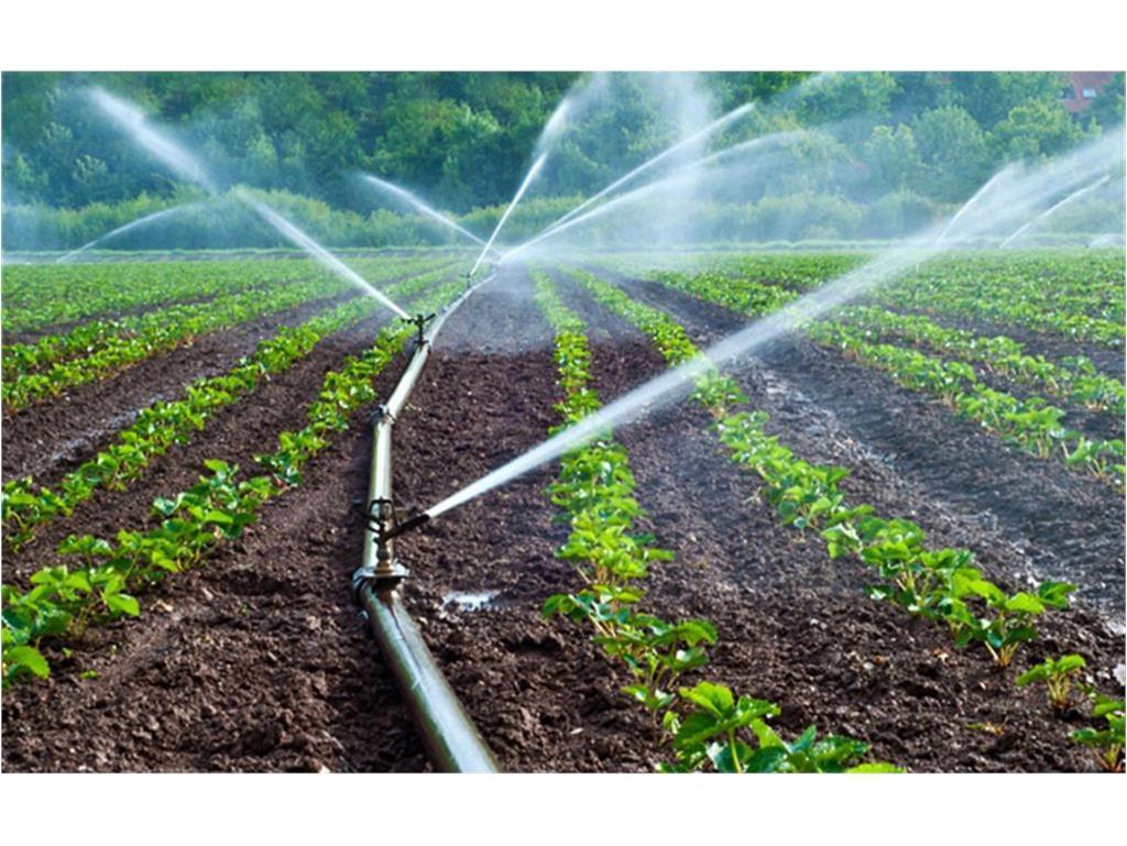 120 هکتار اراضی کشاورزی گلوگاه به سیستم نوین آبیاری تجهیز شد، اعتبار 14 میلیاردی
