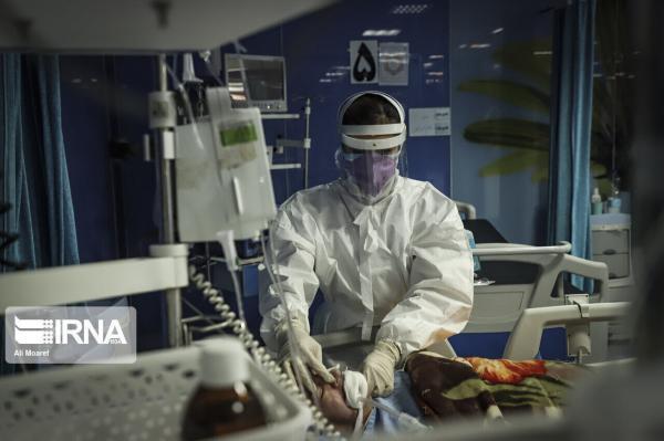 خبرنگاران چهار بیمار کرونایی دیگر در کهگیلویه و بویراحمدجان باختند